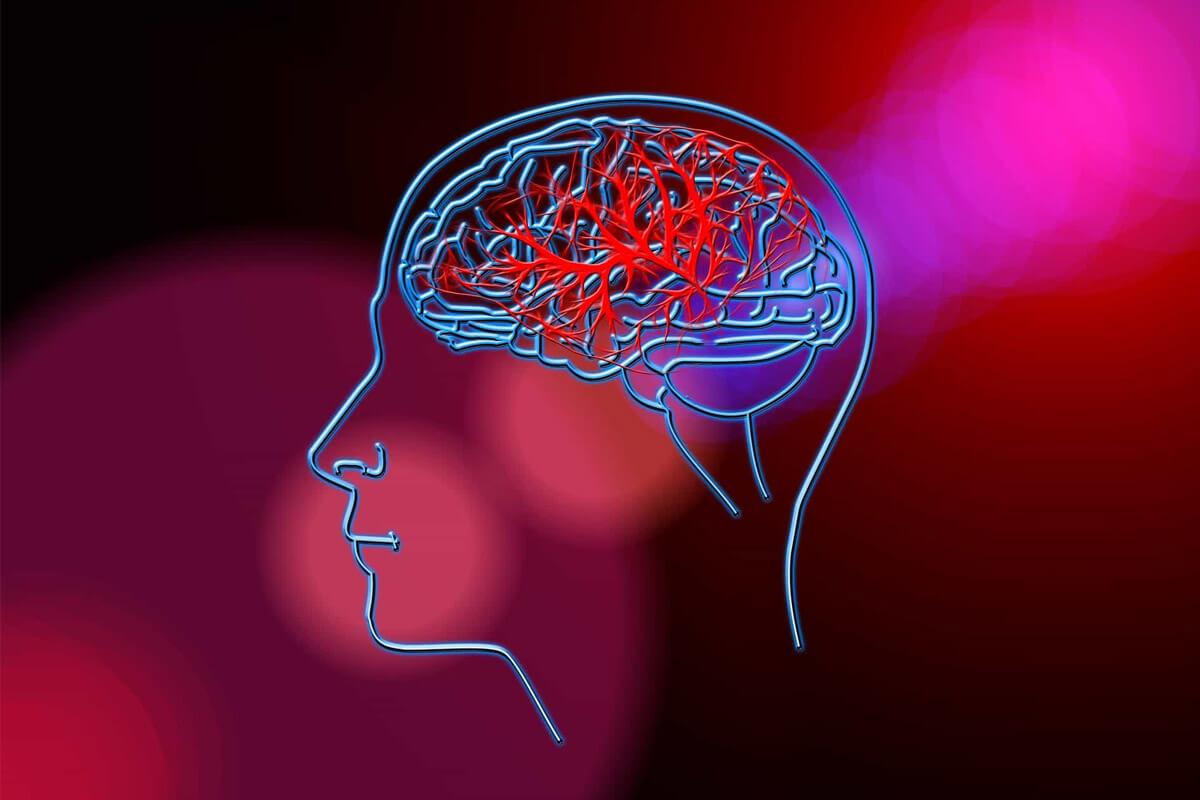 Clusters de interesses, engajamento e consumo: o que são os dados psicográficos e por que eles fazem diferença